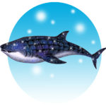 "Illustrations of ""Whale Shark, Huge fish, In the sea, Saltwater fish"""